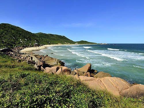 Praia da Calheta Florianópolis SC
